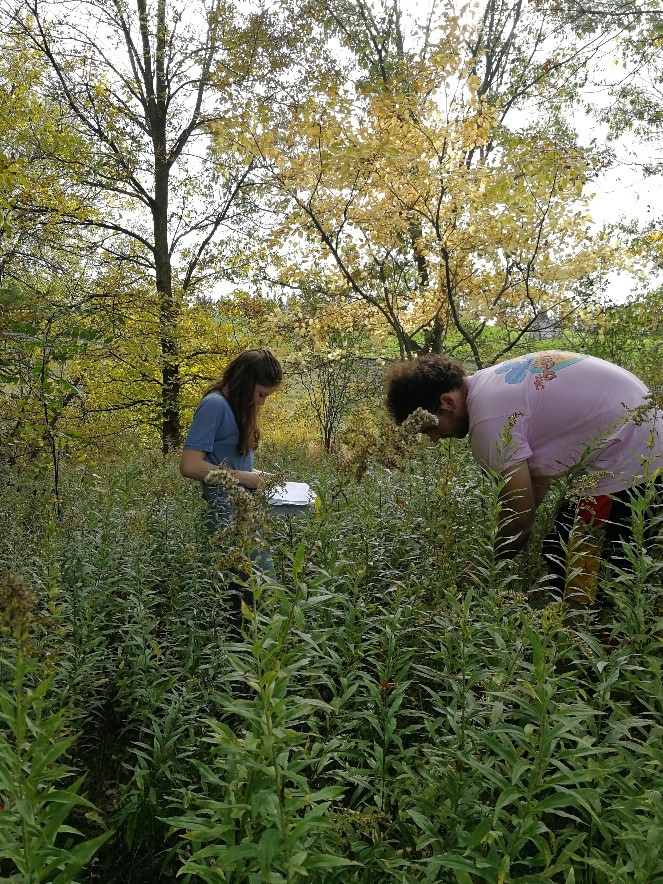 Muller et al. collecting data in the field