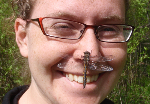 Dragonfly on persons face