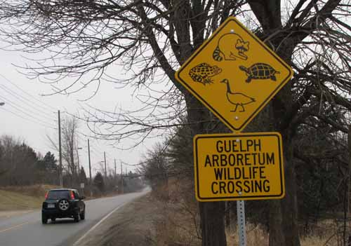 Guelph Arboretum Wildlife Crossing Sign