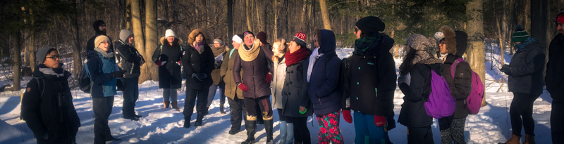participants on a winter walk