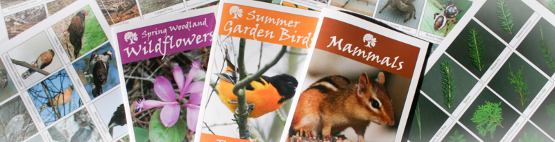 some of the booklets and biodiversity sheets available