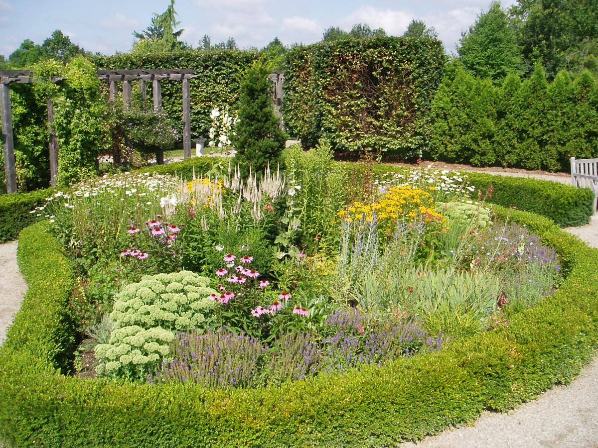 Things to See & Do: Overview | The Arboretum